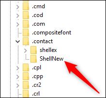 La clé .contact s'est développée pour afficher la clé ShellNew.