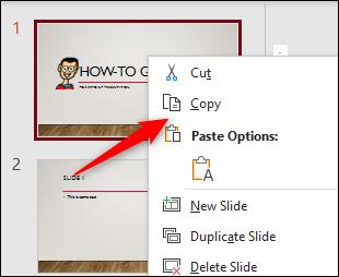 Option de copie dans le menu sur PowerPoint