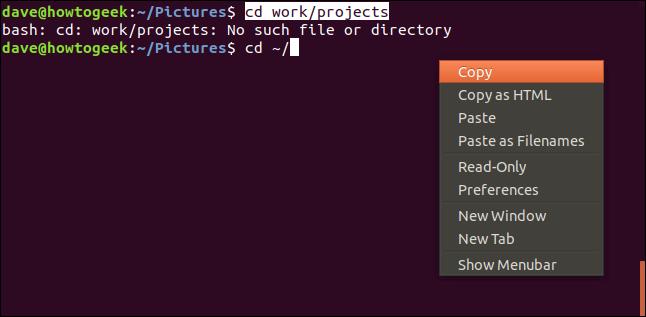 fenêtre de terminal avec menu contextuel et copie en surbrillance