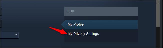Ouverture des paramètres de confidentialité du profil dans Steam