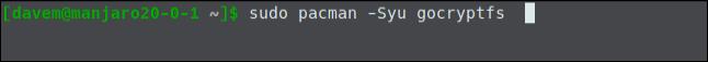 sudo pacman -Syu gocryptfs dans une fenêtre de terminal