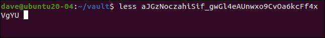 moins aJGzNoczahiSif_gwGl4eAUnwxo9CvOa6kcFf4xVgYU dans une fenêtre de terminal.