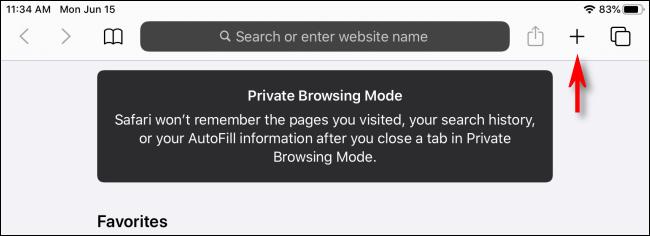 Mode de navigation privée iPad