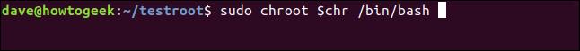 sudo chroot $ chr / bin / bash dans une fenêtre de terminal