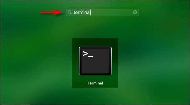 """Ouvrez Launchpad et tapez """"Terminal"""" puis appuyez sur Entrée."""