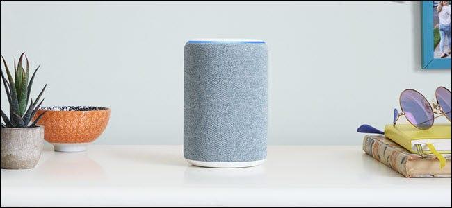 Un Amazon Echo gris à peu près au centre d'une pièce.