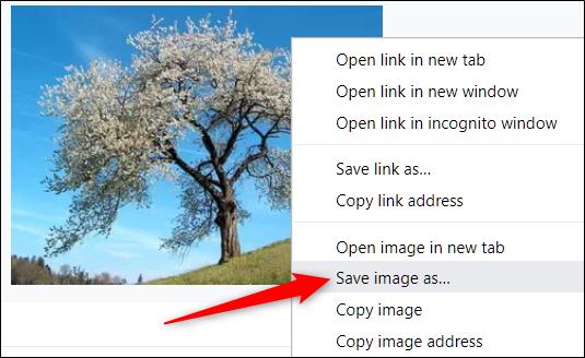 Cliquez avec le bouton droit sur l'image, puis cliquez sur Enregistrer l'image sous