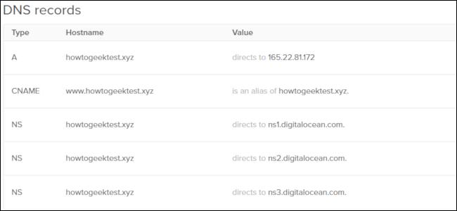 Une grille d'enregistrements DNS de DigitalOcean.