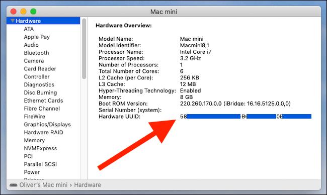 Rapport système montrant l'UUID