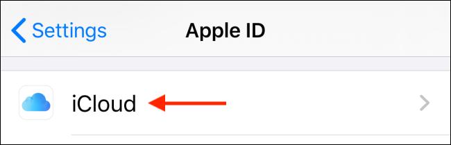 Sélectionnez iCloud dans le profil