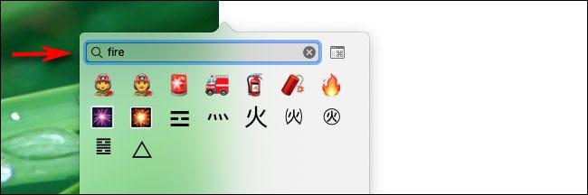 Tapez un mot dans la zone de recherche pour rechercher des emoji sur Mac.