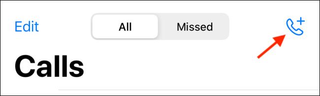 """Appuyez sur le bouton Appeler dans le """"Appels"""" section de l'application iPhone WhatsApp."""