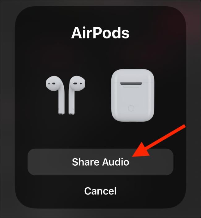 Appuyez sur Partager l'audio