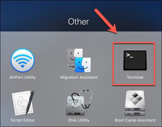 """Appuyez sur l'icône Launchpad sur le Dock, puis cliquez sur le """"Terminal"""" option dans le """"Autre"""" dossier pour lancer l'application Terminal"""