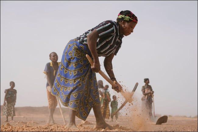 Ecosia aide les communautés agricoles pauvres du monde entier