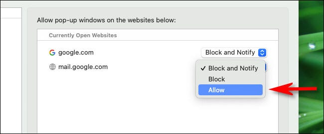 """Dans la liste déroulante à côté du site Web, sélectionnez """"Permettre."""""""
