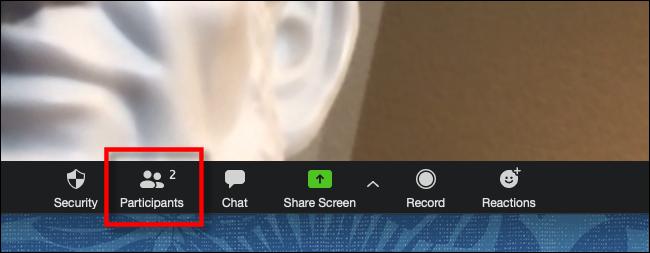 Cliquez sur Participants dans la barre d'outils Zoom