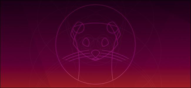 Ubuntu 19.10 Fond d'écran par défaut d'Eoan Ermine.