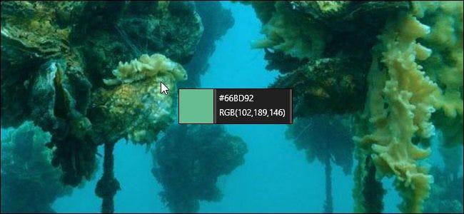 Sélecteur de couleurs PowerToys sur un fond de bureau Bing.